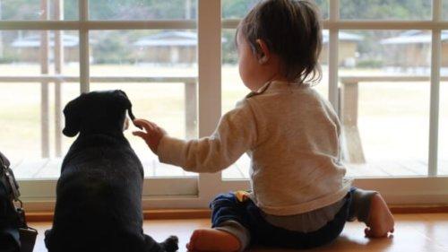 子供と犬が並んで座っている写真