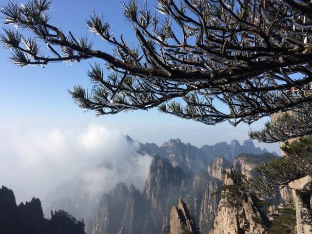 蓬山のイメージ写真